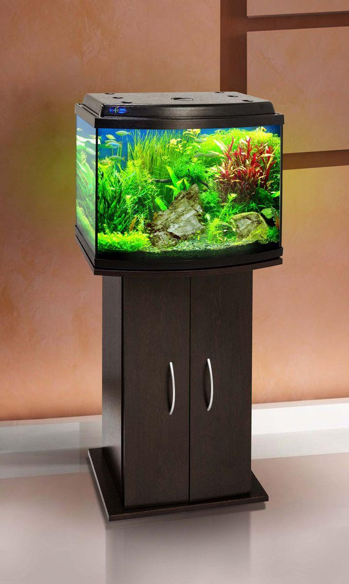 Комплект аквариум+тумба КЛАССИК 50R (венге) 53 л лампа 1*6W в комплекте