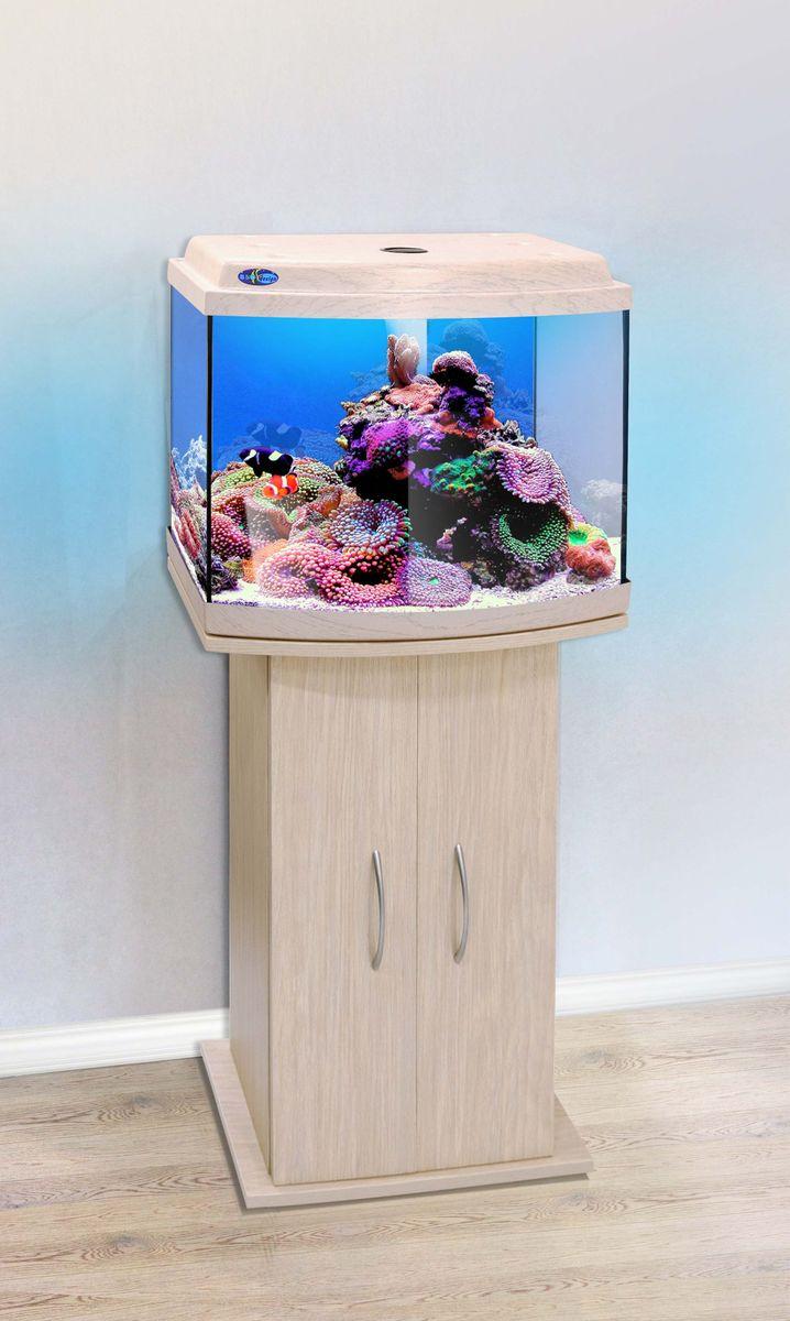 Комплект аквариум+тумба КЛАССИК 50R (белёный дуб) 53 л лампа 1*6W в комплекте