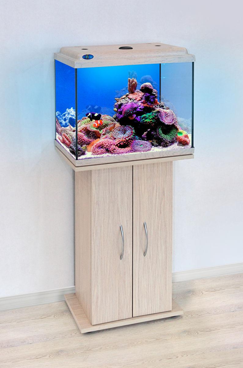 Комплект аквариум+тумба КЛАССИК 50 (белёный дуб) 55 л лампа 1*6W в комплекте