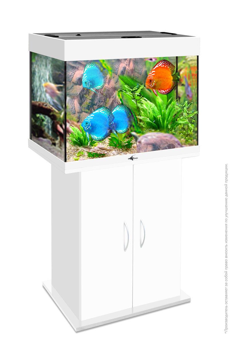 Комплект аквариум+тумба РИФ 100 лампы 2*15W в комплекте (белый) 100л
