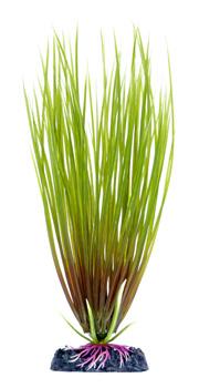 Гелеохарис (17,5 см) P16SH