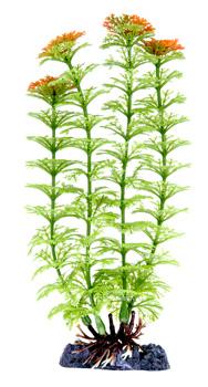 Амбулия зеленая (27,5 см) P18LH