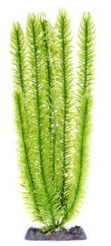 Маяка зеленая (15,24 см) P8SH