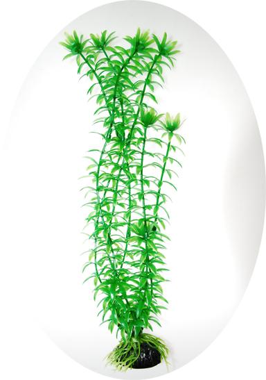 Анахарис зеленый 80см (919060)