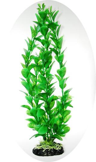 Людвигия салатовая 80см (919018)